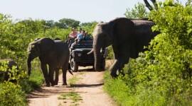 SUDÁFRICA GRAN TOUR