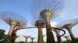 SINGAPUR, VIETNAM, CAMBOYA Y TAILANDIA